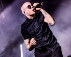 CHESTER-2